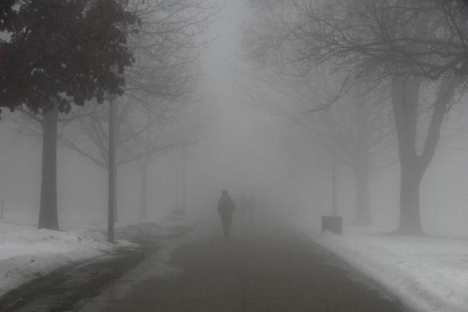 fog-08